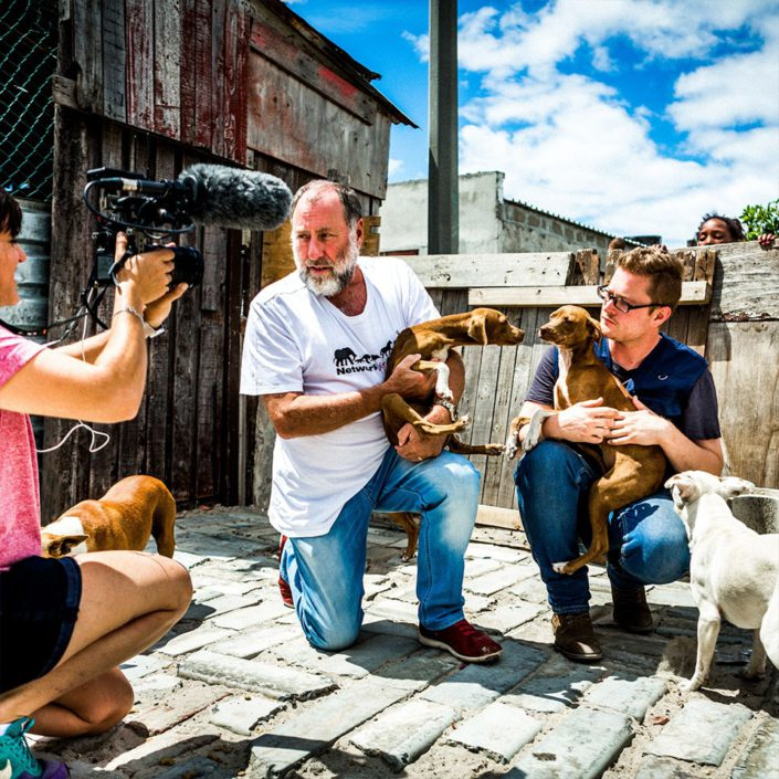 Based in the UK and fighting to help animals in distress all over the globe, Network for Animals has called on us to manage their video and stills photography content to mobilise funds and support.